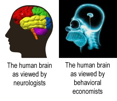 Human_Brains